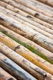 Bambubakgrundscloseup Arkivbilder