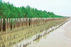 Bambubarriär Royaltyfri Foto