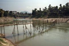 Bambubro över floden Arkivbilder