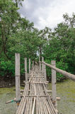 Bambubro Arkivfoton