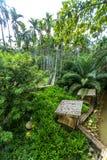 Bambubro på kanalen i trädgård Royaltyfria Bilder