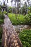 Bambubro på kanalen i trädgård Arkivfoto