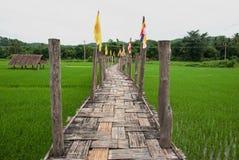 Bambubro på risfält Arkivfoto