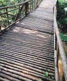 Bambubron royaltyfria bilder