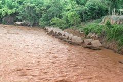 Bambuflotte på Muddy vatten som flödar i floden Royaltyfria Foton