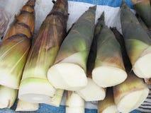 Bambufors Royaltyfri Fotografi
