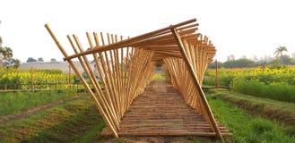 Bambugångbana bambupinnarna arkivbild