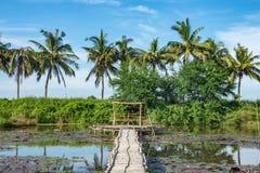 Bambugångbana och bambuhydda på dammet royaltyfria bilder