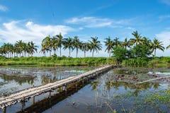 Bambugångbana och bambuhydda på dammet arkivbild