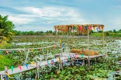 Bambugångbana på dammet royaltyfria bilder