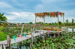 Bambugångbana på dammet royaltyfri bild