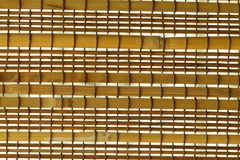 Bambugardin Arkivbild
