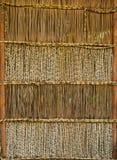 Bambugardin, texturbakgrund Royaltyfria Foton