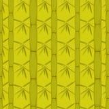 bambugreen Arkivbild