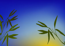 bambugroddar Arkivbild