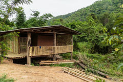 Bambuhus i fungglen Arkivbilder