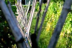 Bambuinfallkonster arkivbilder