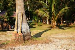 Bambukvast för att göra ren stranden Royaltyfri Fotografi