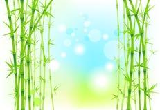 Bambunaturbakgrund Royaltyfria Bilder