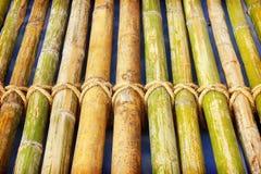Bambupanel med ett bundet rep royaltyfri bild