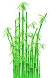 Bambupinnar över vit bakgrund Arkivbild