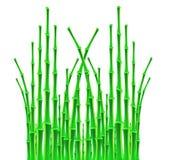 Bambupinnar över vit bakgrund Royaltyfri Foto