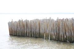 Bambuport Royaltyfri Fotografi