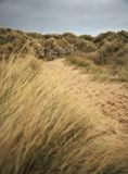 Bamburgh beach path Stock Photography