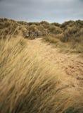 Bamburgh beach path Stock Photography