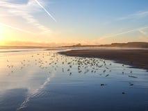 Bamburgh kasztel w Northumberland, Anglia Farne wyspy ar Obraz Stock