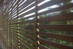 Bamburullgardiner Fotografering för Bildbyråer