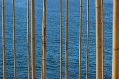 Bambusów badyle Fotografia Royalty Free