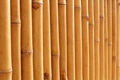 Bambusów badyli wzór Obraz Stock
