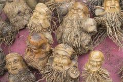 Bambusów korzenie rzeźbiący Zdjęcie Stock