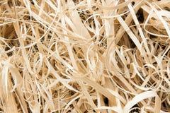 Bambusów świstki Obraz Royalty Free