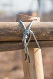 Bambus łączy punkt Fotografia Stock