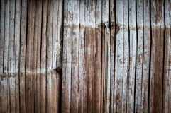 Bambus ściana Obrazy Royalty Free