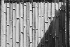 Bambus ściana błyszczącą bambus ścianę Czarny i biały wizerunek Obrazy Royalty Free