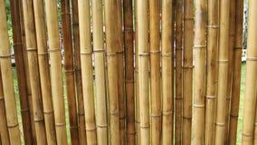 Bambus ściana dla tło Obrazy Royalty Free