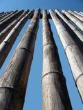 bambus ściany fotografia royalty free