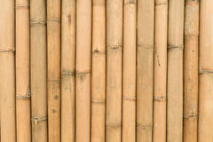 Bambus ścienna tekstura zdjęcia stock