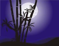 Bambus lizenzfreie abbildung