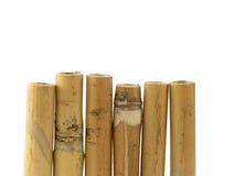 Bambus Lizenzfreie Stockfotografie