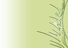 bambus abstrakcjonistyczna zieleń Obrazy Royalty Free
