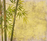 Bambus auf alter Schmutzpapierbeschaffenheit Lizenzfreie Stockfotos