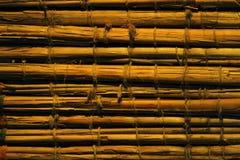 Bambus bakgrund Royaltyfri Fotografi