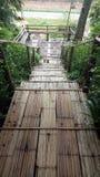 Bambus-brige Lizenzfreies Stockbild