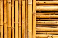 Bambus ściana Zdjęcia Royalty Free