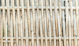 Bambus des Musterdesigns Lizenzfreies Stockfoto