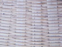 Bambus dla tła Zdjęcie Stock